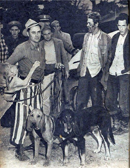 Hogjaw and his blood hounds after the capture of Windell White and Leon Turner.