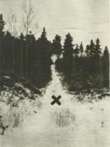 deserted-log-trail